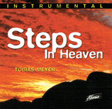 Tobias Meyer - Steps In Heaven (Instrumental)