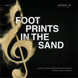 Chor & Symphonieorchester Animato, Tracey Jane Campbell - Footprints In The Sand (2-CD)
