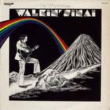Dan Whittemore - Walkin' Sinai