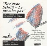 CREDO 91' - Der erste Schritt