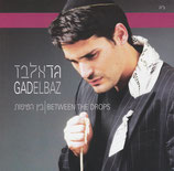 Gad Elbaz - Between The Drops (nw)