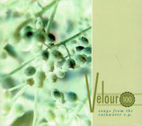 Velour 100 - Songs from the Rainwater e.p.
