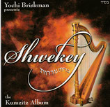 Yaakov Shwekey - The Kumzitz Album