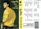 Lior Fahri - Like A Silent Stone