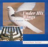 Jonathan Settel - Under His Wings