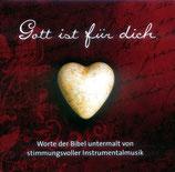 Philipp Schepmann & Tobias Meyer - Gott ist für dich