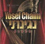 Yosef Chaim Bloch - Neginosi