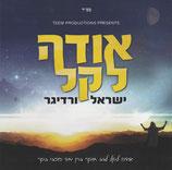 Yisroel Werdyger - Odeh Lokeil