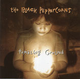 The Black Peppercorns - Tumbling Ground