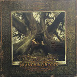 Paul Clark - Branching Roots