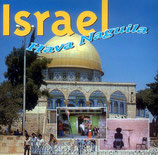 Various Instrumental - Have Nagila Israel