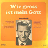 Jakob Zopfi - Wie gross ist mein Gott