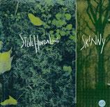 Steve Hindalong - Skinny