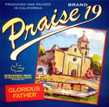 Praise 19 - Glorious Father