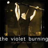 The Violet Burning - Sting Like Bees And Sing