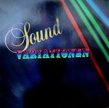 Ronny Winter + Rose-Room-Dance-Orchestra - Sound Variationen