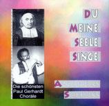 Andreas Schuss - Du meine Seele singe (Die schönsten Paul Gerhardt Choräle)