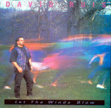 David Ruis - Let The Winds Blow