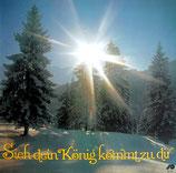 Wetzlarer Kinderchor, Jubilate Chor,  - Sieh dein König kommt zu dir