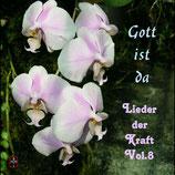 Gott ist da - Lieder der Kraft Volume 8 (u.a. mit Anni & Franz Keiper)
