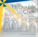 Hegnauer Chor singt bekannte Schlager