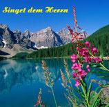 Singet dem Herrn