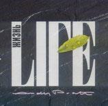 Andy Pratt - Life