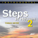 Tobias Meyer - Steps in Heaven 2