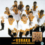 Ladysmith Black Mambazo - Ushaka