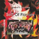 Gospel & Pop Chor Sea Of Flames - Inflammable
