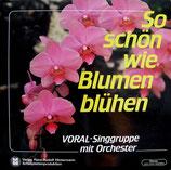 Voral-Gruppe - So schön wie Blumen blühen