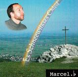 Marcel Buergi - Es schneewiisses Chleid
