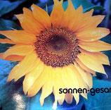 Christusträger-Schwestern - Sonnengesang