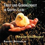 Andres Brüdelin - Trost und Geborgenheit in Gottes Liebe (Ängste bewältigen)