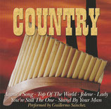 Guillermo Sanchez - Country (Perfect Panpipes)