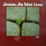 Chöre des Semniars der Liebenzeller Mission - Jesus,du bist treu