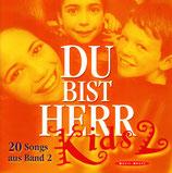 Du bist Herr Kids 2 - 20 Songs aus Band 2