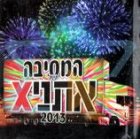 ETHNIX - The Ethnix Party 2013