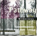 John Andrew Schreiner - Pathway through the Wilderness
