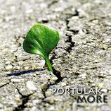 PORTULAK : More