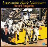 Ladysmith Black Mambazo - Phansi Emgodini