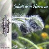 EBV - Gesamtgemischtenchor und Gesamtmännerchor Steffisburg 2004 - Jubelt dem Herrn zu
