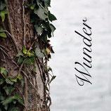 Wunder - Maturarbeit von Barbara Seiler