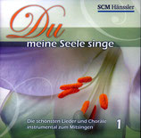 Dennis Thielmann - Du meine Seele singe