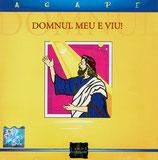 AGAPE - Domnul Meu E Viu!