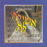 Camp Shalva Choir - Camp Shalva 5 (Moshe Goldman)