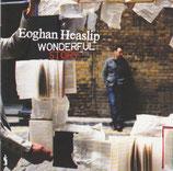 Eoghan Heaslip - Wonderful Story