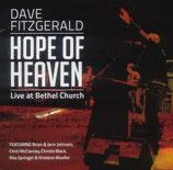 David Fitzgerald - Hope of Heaven