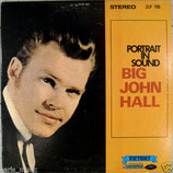 John Hall - Portrait In Sound