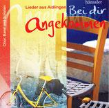 Aidlinger Chor, Band und Solisten - Bei dir angekommen